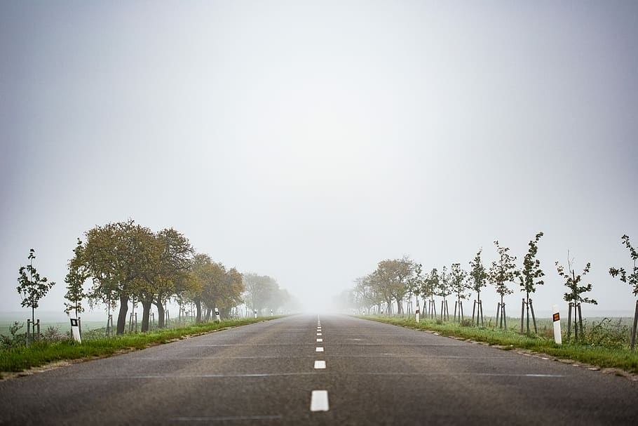 Foggy Road to Nowhere (Piqsels CC0)